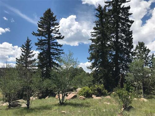 Fish Creek : Lake George : Park County : Colorado