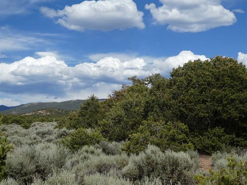 Great 5 Acre Lot Electricity Nearby : Fort Garland : Costilla County : Colorado