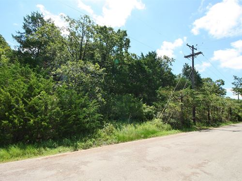 Wooded Unrestricted Acreage : Teague : Freestone County : Texas