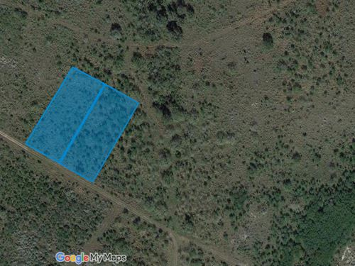 2 Acres For Sale In Sandia, Tx : Sandia : Live Oak County : Texas