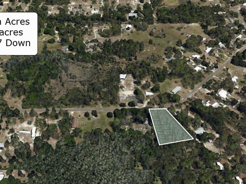 .95 Acre Lot On Paved Road : Homosassa : Citrus County : Florida