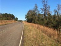 16.40 Acres in Magnolia, Mississippi : Magnolia : Pike County : Mississippi