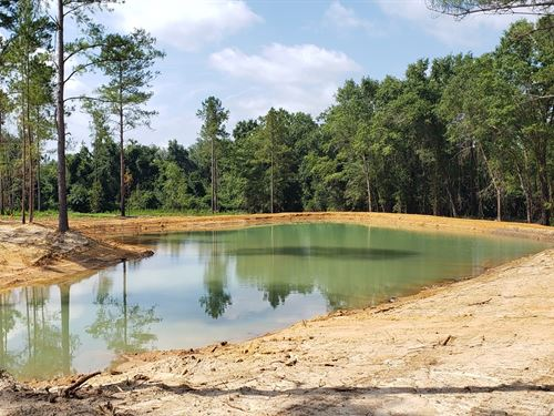 15 Acre Estate Size Lot Swainsboro : Swainsboro : Emanuel County : Georgia