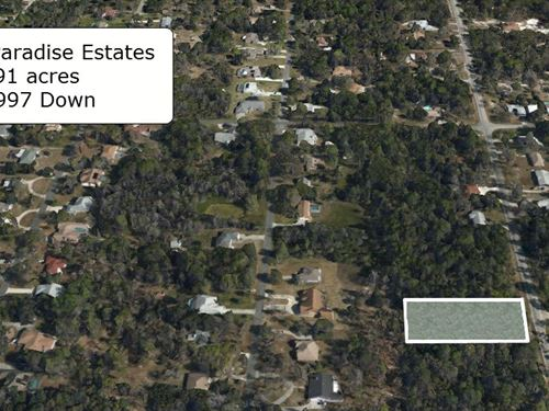 .91 Acre Lot On Paved Road : Crystal River : Citrus County : Florida