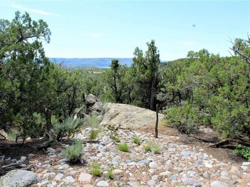 High Point Vista, Recreation or : Navajo Dam : San Juan County : New Mexico