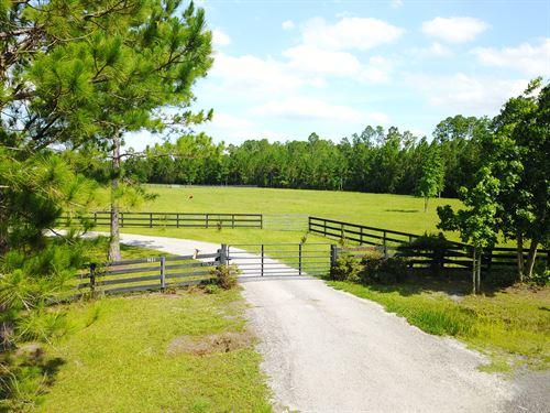 5+ Acres- Forest Acres Ln : Jacksonville : Duval County : Florida