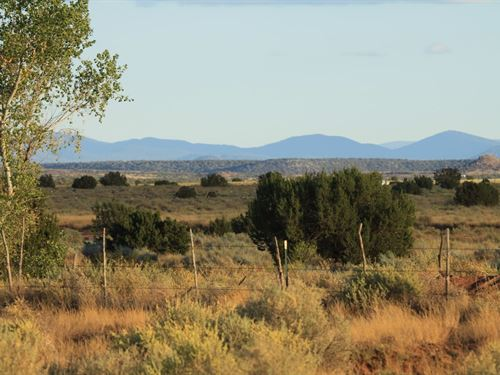 Northern Az High Country Homesites : Snowflake : Navajo County : Arizona