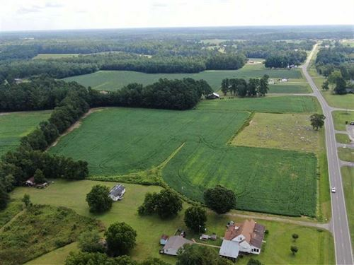 14 Acres of Farm Land For Sale in : Cerro Gordo : Columbus County : North Carolina