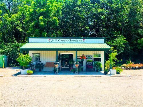 Arkansas Established Nursery : Pocahontas : Randolph County : Arkansas