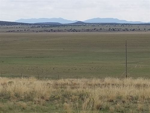 NM Vacant Lot Ranchette Estancia : Moriarty : Torrance County : New Mexico