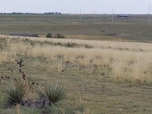 Moriarty NM 1.41 Acres Ranchette : Moriarty : Torrance County : New Mexico