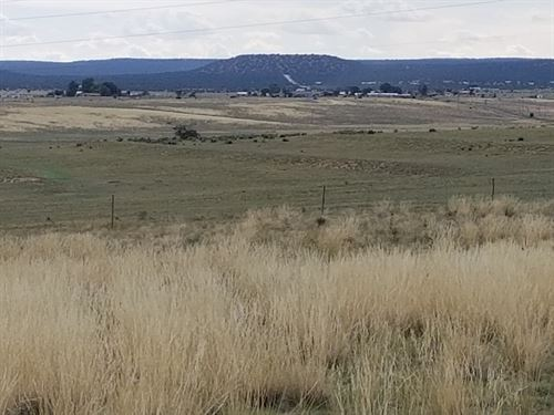 Central NM Acreage Moriarty : Moriarty : Torrance County : New Mexico