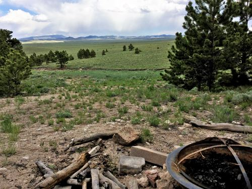 8958042, Expansive 4.45 Acre Tract : Hartsel : Chaffee County : Colorado