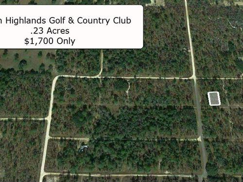 Rare .23 Acre Exclusive Vacant Lot : Williston : Levy County : Florida