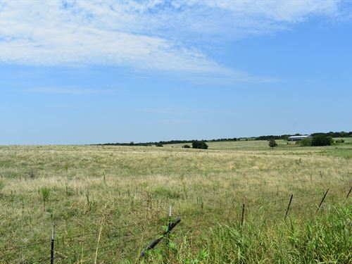 11 Acres In Tx Perfect For Building : Coupland : Williamson County : Texas