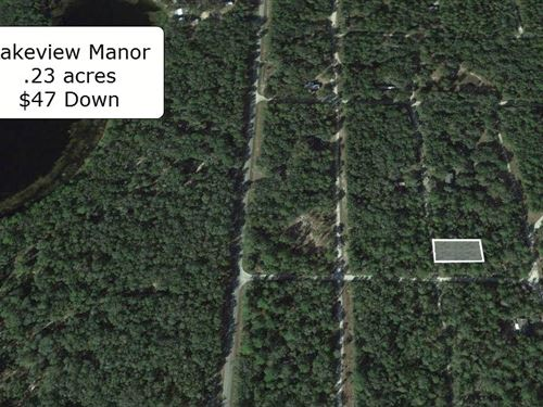Exclusive .23 Acre Close To Lake : Fort McCoy : Marion County : Florida