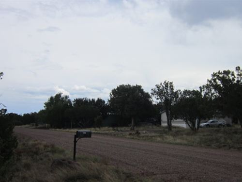 .5 Acres, Power & Water Available : Show Low : Navajo County : Arizona