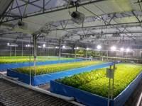 Aquaponic Greenhouse With 4 Br Home : Hampton : Hunterdon County : New Jersey