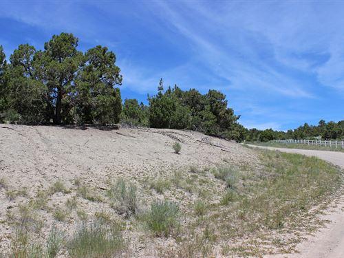 Land For Sale in Mancos CO : Mancos : Montezuma County : Colorado