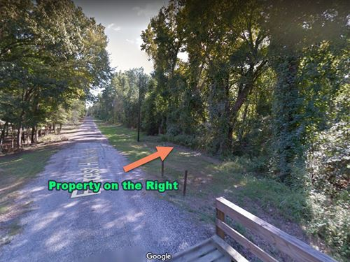 .59 Acres Creek-Front Only $3,900 : Livingston : Polk County : Texas