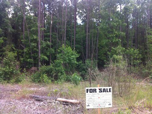 Sarah Hill Estates, 1.50 Acre Lot : Lizella : Crawford County : Georgia