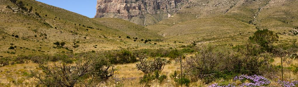 20 Acres Only $99 Dn., $99/Mo : Sierra Blanca : Hudspeth County : Texas