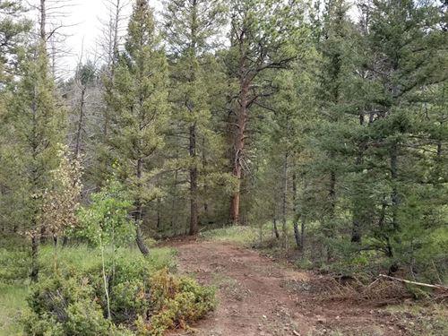 Total Isolation : Cripple Creek : Teller County : Colorado