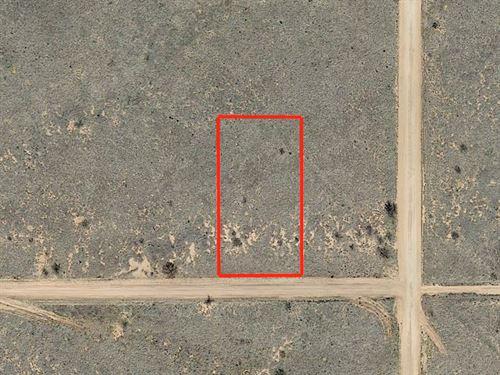 1+ Acre Lot Near Sunsites : Sunsites : Cochise County : Arizona