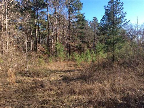 Moore Cemetery Road Tract, Grant : Dry Prong : Grant Parish : Louisiana