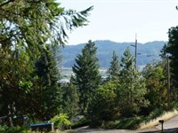 Beautiful Treed Lot With Utilities : Sutherlin : Douglas County : Oregon