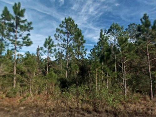 Investment 10 Miles W Of Palm Coast : Bunnell : Flagler County : Florida