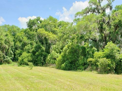 Belleview Hills Estates, B2 L4&5 : Summerfield : Marion County : Florida