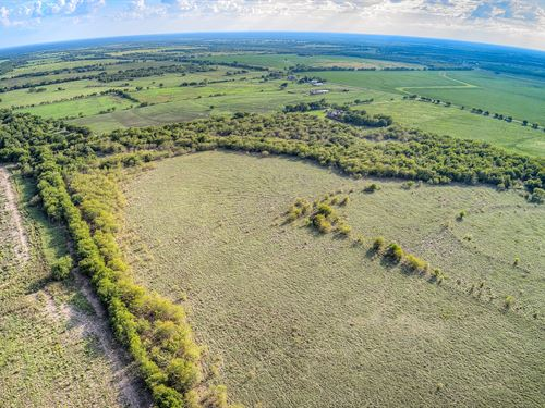 11 Acres In Tx, Owner Financing : Greenville : Hunt County : Texas