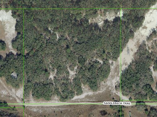 Owner Financing Available 9.89 Acre : Spring Hill : Pasco County : Florida