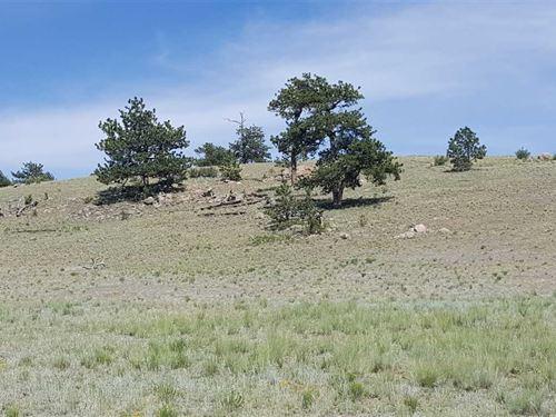Colorado Getaway, End of The Road : Hartsel : Park County : Colorado