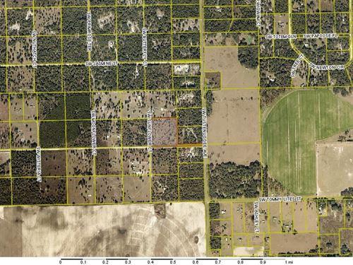 Acreage in Columbia County, FL : Fort White : Columbia County : Florida