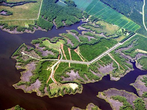 15 Acres Wooded / Clear Parcel : Scranton : Hyde County : North Carolina