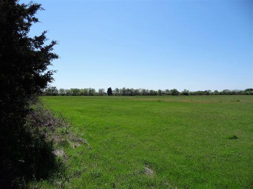 18.3 Acres In Tx, Owner Financing : Wills Point : Van Zandt County : Texas