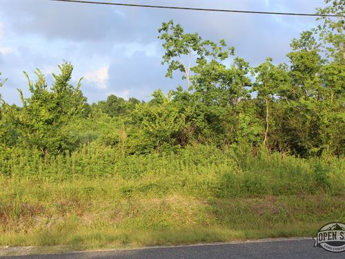 1.12 Acres As You Always Wanted In : Alba : Wood County : Texas
