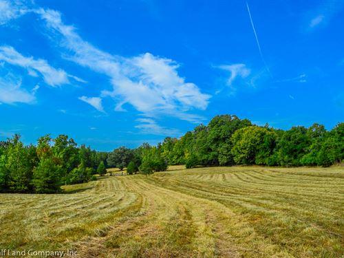 12 Acre Riverfront Property Pauline : Pauline : Spartanburg County : South Carolina