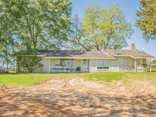 Dickens Casita 3 Acres : Livingston : Polk County : Texas