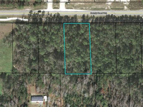 4177 Cr 218, Middleburg, Commercial : Middleburg : Clay County : Florida