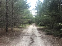 Longford Road : Jesup : Wayne County : Georgia
