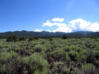 Rare Adjoining Lots, Power, $449/Mo : Fort Garland : Costilla County : Colorado