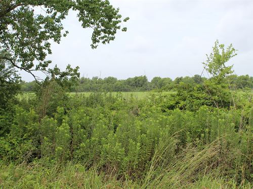 A New Life Ahead At This 5 Acre Lot : Blessing : Matagorda County : Texas