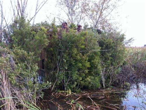 Crawfish/Duck Pond Tract, Iber : Lydia : Iberia Parish : Louisiana