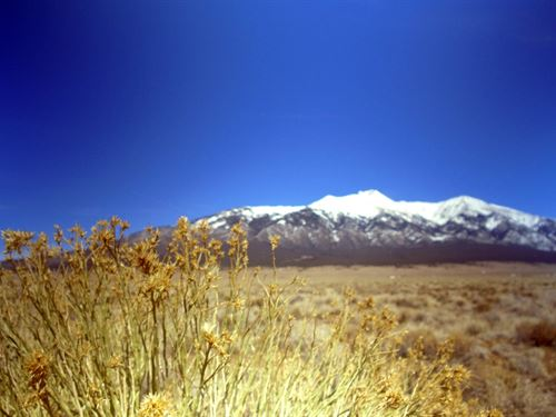 Huge Mtn Views, Great Access, $99/M : Blanca : Costilla County : Colorado