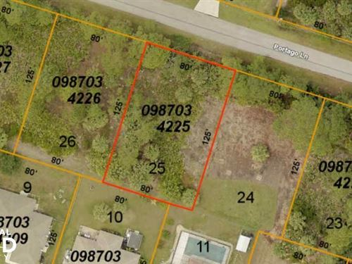 Great Lot And Very Nice Houses Near : North Port : Sarasota County : Florida