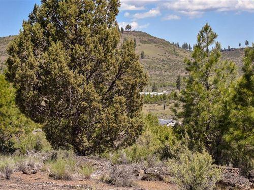 Oregon Land Sale, $500 Down : Sprague River : Klamath County : Oregon
