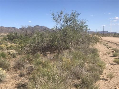 Az Land Sale, 249 Down And 119/Mth : Chloride : Mohave County : Arizona